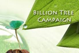 The campaign has been one of the most successful initiatives by UNEP.