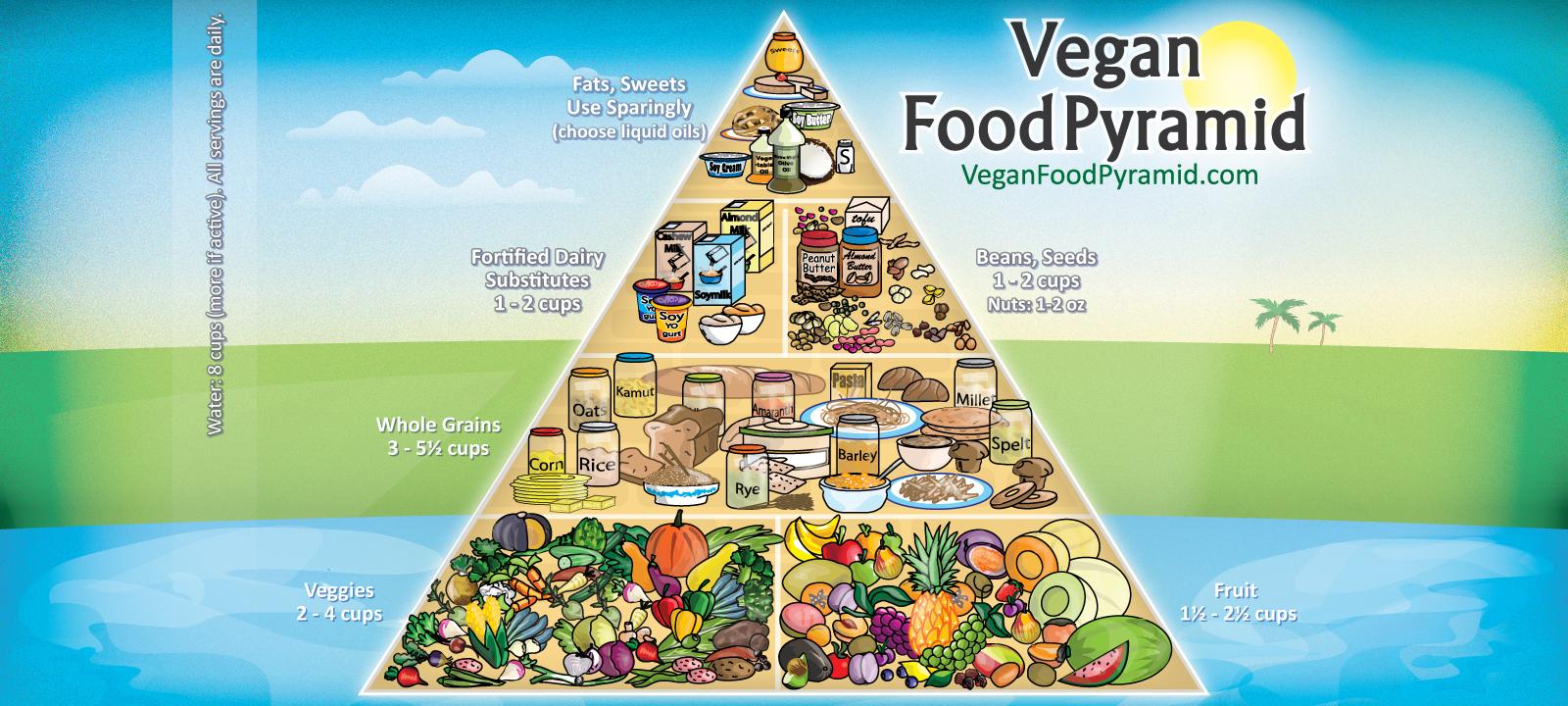 Any Vegan Food Stores