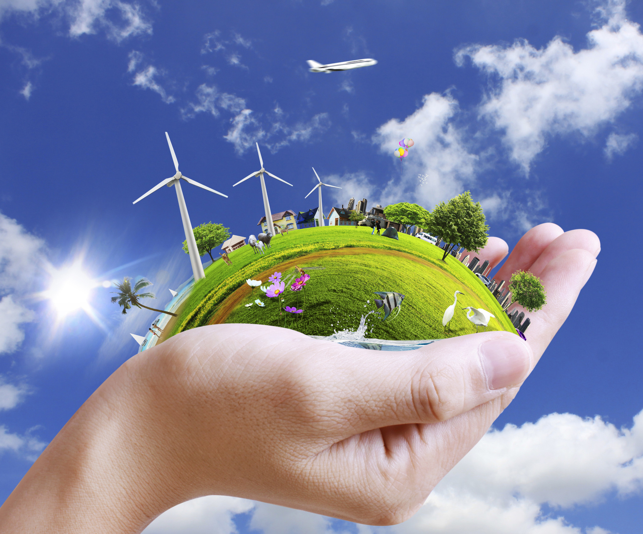 why do we need environmental laws follow green living