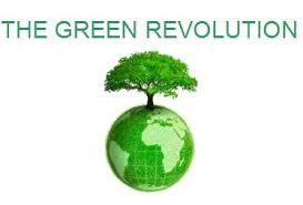green revolution essay india