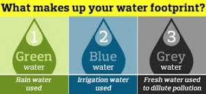 A measure of our water consumption