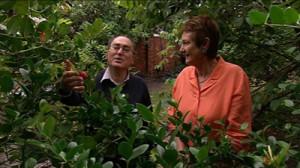 gardening specialists