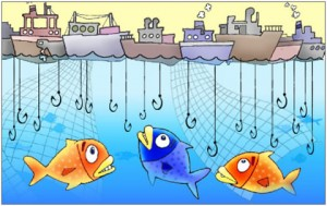 problem-of-overfishing