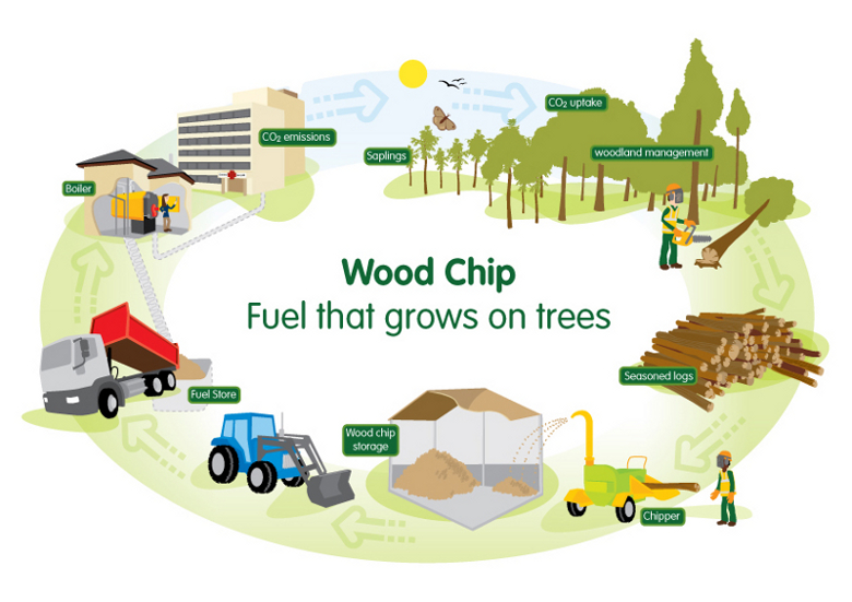 Biomass energy reviving the traditional sources through