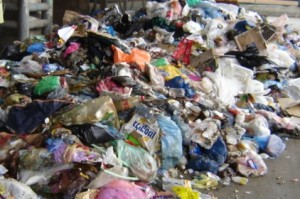 A common lot of domestic waste