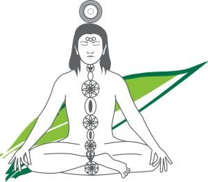 Aarogyam11