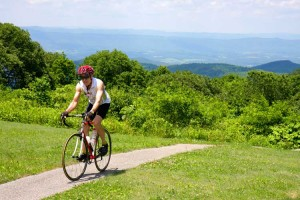 Bicyclist_Sunsetfield