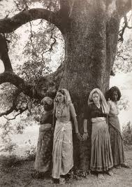 A photograph of women of the village surrounding the tree, the concept of the Chipko Movement.
