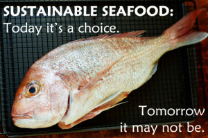 Sustainable Seafood- Can save the marine life