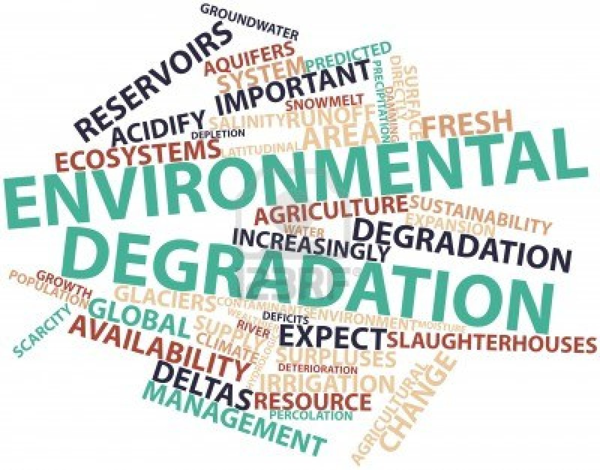 essay on impact of environmental degradation Poverty and affluence and environmental impact it is important to point out the differences in how poor societies and.