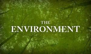 environment_film_landing