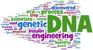 genetic-engineering-wordy-pic