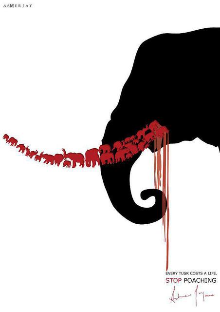 Blood Ivory