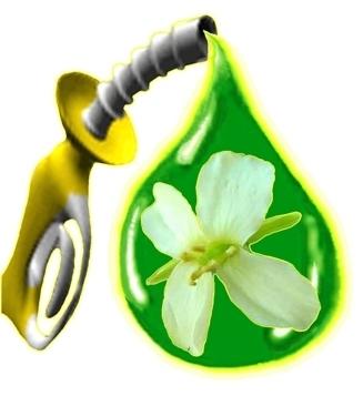 biofuel_logo