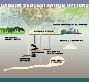 carbon_sequestration_f