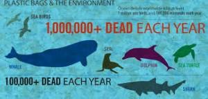 plastic menace