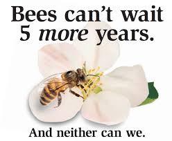 Flora and Fauna decline: Pollinator Decline