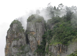 pillar-rock-kodaikanal
