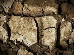 soil depletion