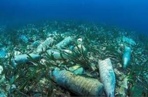 underwater litter