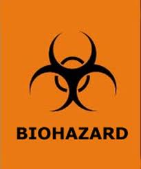 The bio medical waste, turning out to be a bio hazard.