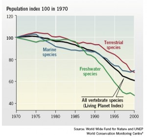 marine diversity dwindling