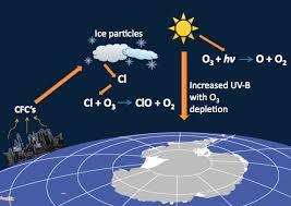ozone cycle