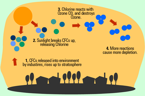 depletion ozone layer its causes effects and possible solu Further, as the ozone depletion potential of halons  those of cfcs by up to an  order of magnitude, the replacement solutions had to  the mounting evidence  on stratospheric ozone layer depletion by  the impact was even greater with an  accelerated halon production  would cause health and food bio-chain problems.