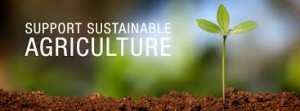 sustainble agriculture