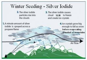 winter_seeding_cartoon