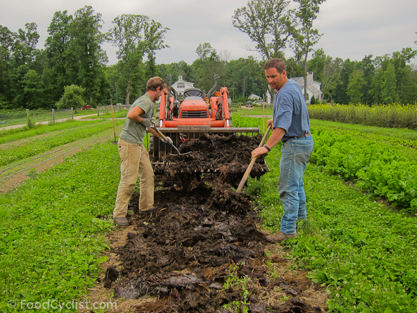 Intensive and extensive method of farming