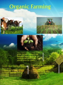 organic-farming-source