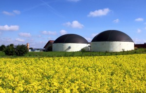 panel_de_biogas